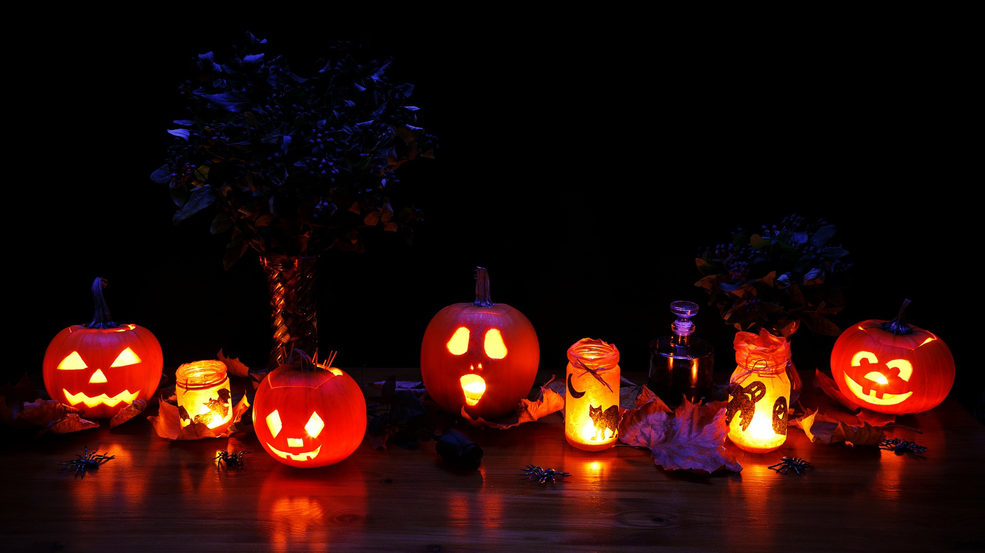 Pumpkin Patch & Halloween Activities Around Nanaimo